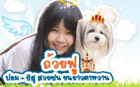 ถ้วยฟู   ปอม + ชิสุ สวยซน ขนยาวตาหวาน