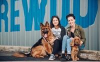 เจ๋ง! บริษัทดังให้พนักงานลาพักร้อนฟรี 1 สัปดาห์ ถ้ารับเลี้ยงสุนัขตัวใหม่