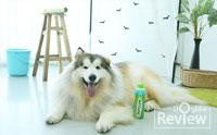 มอบสุขภาพที่ดีให้น้องหมาด้วยแชมพูสูตรธรรมชาติ Tropiclean