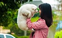 5 พฤติกรรมที่บอกว่าน้องหมาขาดคุณไม่ได้ (ต้องแก้ด่วน!!)