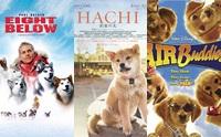 รวม 8 หนังปัง! ที่น้องหมาแสดงนำ (ยังจำกันได้ไหม?)