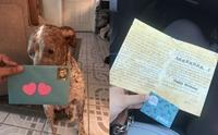 เรื่องราวซึ้ง ๆ เมื่อหนุ่มส่งการ์ดวันเกิดให้สุนัขที่รับเลี้ยงร่วมกับแฟนเก่าทุกปี !!