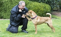 อดีตเจ้าตูบที่เคยถูกผูกทิ้งในสถานีรถไฟ กับชีวิตใหม่ที่ได้ช่วยเหลือเพื่อนสุนัข !
