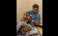ปลื้ม! คลิปสัตวแพทย์หนุ่มร้องเพลงกล่อมสัตว์คลายเครียดก่อนผ่าตัด