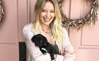 สวยใจดี! นักแสดงสาว Hilary Duff รับเลี้ยงลูกสุนัขที่ไม่มีใครต้องการ