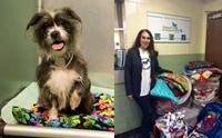 สุดปลื้ม! ประชาชนร่วมใจเย็บผ้าห่มส่งให้หมาแมวในศูนย์พักพิงฯ