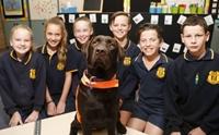 รู้จัก เจ้า Willow สุนัขผู้มีตำแหน่งเป็นผู้ช่วยการศึกษาประจำโรงเรียนมัธยมฯ