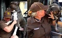 สุดซึ้ง! พนักงานส่งของ UPS รับเลี้ยงน้องหมาหลังรู้ข่าวว่าเจ้าของเสียชีวิต