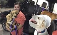 หนุ่มมะกันไม่สนคำเตือน เสี่ยงชีวิตช่วยสุนัขรอดตายจากพายุฮาร์วีย์ !