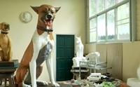 ประติมากรรมคุณทองแดง-คุณโจโฉ สุนัขทรงเลี้ยงแสนรู้ ในหลวง ร.๙ ประดับพระเมรุมาศ