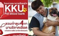 ม.ขอนแก่น ชวนเจ้าของพาสุนัขและแมวร่วมบริจาคเลือดช่วยเหลือสัตว์ป่วย