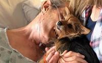 ซึ้ง! พยาบาลแอบช่วยให้คุณปู่ป่วยมะเร็งได้พบสุนัขสุดรักเป็นครั้งสุดท้าย