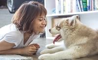 แจกสูตร 5 วิธีที่ทำให้คุณและน้องหมาสุขภาพจิตดีตลอดทั้งปี