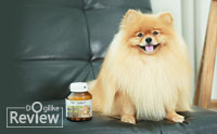 ดูแลน้องหมาให้แข็งแรงอายุยืนด้วย  Pet Select SENIOR