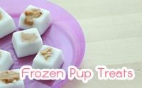 D.I.Y Frozen Pup Treats ขนมเจ้าตูบทำง่ายใน 3 นาที
