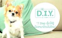 D.I.Y 7 Step เช็กให้รู้ น้องหมาอ้วนไม่อ้วน !