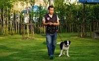 สัมภาษณ์ ครูหนึ่ง นักปรับพฤติกรรมสุนัข ...