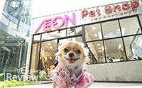ไม่ไปไม่ได้ !!  Aeon Pet Shop เพ็ทช็อปสไตล์ญี่ปุ่นที่แรกในประเทศไทย