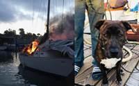 นาทีชีวิต! เจ้าตูบอยู่บนเรือที่เกิดเหตุเพลิงไหม้ เคราะห์ดีตำรวจช่วยชีวิตทัน