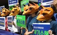 ฆ่าโดยไม่จำเป็น! ศาลเกาหลีสั่งปรับหนักผู้ประกอบการฟาร์มสุนัขเนื้อ