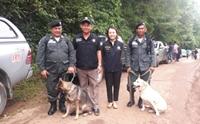 ตามติดภารกิจทีมสุนัขตำรวจช่วยเหลือค้นหาผู้สูญหาย ถ้ำหลวง-ขุนน้ำนางนอน