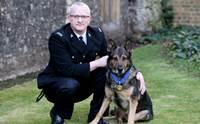 เจ้า Finn สุนัขตำรวจช่วยชีวิตคู่หู ได้รับรางวัล Hero Animal of the Year
