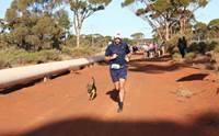 วิ่งสู้ฟัด ! หมาจรจัดร่วมแข่งมาราธอน 21 ก.ม. คว้าเหรียญแดนจิงโจ้