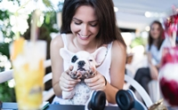 จัดอันดับ 5 สิ่งที่ด็อกเลิฟเวอร์ที่ชอบทำเวลาเจอน้องหมา(ของคนอื่น)