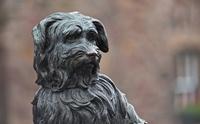 5 แลนด์มาร์ค รูปปั้นสุนัขที่มีชื่อเสียงระดับโลกที่นักท่องเที่ยวต้องแวะไปเยี่ยม