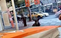 สาวเห็นหมาจรฯนอนส่งสายตาอยู่หน้าร้านพิซซ่า พอไปดูป้ายห้อยคอถึงได้รู้ความจริง!