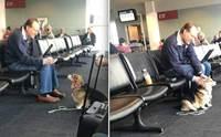 คอร์กี้เดินเข้าไปหาชายที่นั่งรอขึ้นเครื่องบินลำพัง และนี่คือสิ่งที่เกิดขึ้น!
