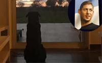 สุดเศร้า ... นักเตะดังเครื่องบินตก น้องสาวโพสต์ภาพ หมานั่งเฝ้ารอเจ้านายกลับบ้าน