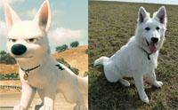 จัดอันดับ 5 สายพันธุ์น้องหมาจากการ์ตูนชื่อดัง