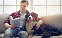 ผลวิจัยชี้ มลพิษในบ้าน(อาจ)ทำคนและสุนัขเสื่อมสมรรถภาพทางเพศได้