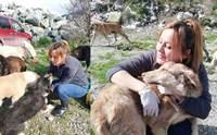 ชื่นชม! สาวทุ่มสุดตัวช่วยลูกหมาจรฯ นับร้อยชีวิตในตุรกี