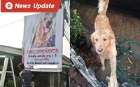 สุดฮา ... หมาหายเจ้าของสั่งทำป้าย ค่าป้ายยังไม่ทันจ่าย เจอหมาซะแล้ว!!!