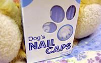 Review Dog's Nail Caps ปลอกเล็บสำหรับน้องหมา