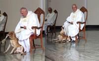 น่าเอ็นดู! บาทหลวงทำแบบนี้ เมื่อเจอเจ้าตูบหลุดเข้าไปป่วนในโบสถ์