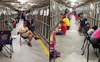 อาสาฯนับร้อยคนช่วยปลอบใจตูบในศูนย์พักพิงฯ กลัวเสียงพลุวันชาติสหรัฐฯ!