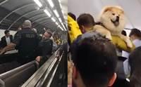 รถไฟใต้ดินสัญญาณเตือนภัยดัง ผู้คนพากันหนีแต่ชายคนหนึ่งกลับทำแบบนี้!(คลิป)