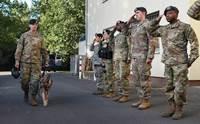 ทหารมะกันตั้งแถวอำลา 2 สุนัขป่วยมะเร็งก่อนส่งการุณยฆาตพ้นความเจ็บปวด !