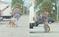 สาวเตะสุนัข-ดึงคอจนตัวลอย ถูกตำรวจจับกลับบอกว่า กำลังฝึกตูบอยู่ !