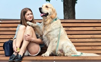 จัดอันดับ 5 สายพันธุ์สุนัขที่นิยมใช้บำบัดผู้ป่วยจิตเวช