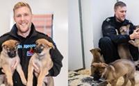 น่ารัก! อังกฤษเผยโฉมลูกหมา 9 ตัวที่จะถูกฝึกเป็นสุนัขตำรวจ