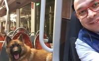 คนขับรถโดยสารเจอน้องหมาเดินลำพัง เขาเลยตัดสินใจทำแบบนี้ !