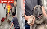 ห่วงบ้านไหม้จนต้องรีบอุ้มออก เมื่อน้องหมากลัวว่าบ้านตัวเองจะไฟไหม้
