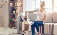 5 กิจกรรมแก้เบื่อให้น้องหมา เมื่อต้องอยู่แต่ในบ้านเป็นเวลานาน