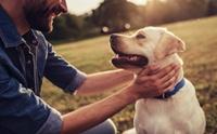 นักวิจัยค้นพบ เซ็นเซอร์ตรวจวัดสัญญาณชีพแบบใหม่ในสัตว์เลี้ยง