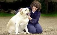 5 พฤติกรรมที่ควรหยุด เพราะจะทำให้น้องหมาอ้วนโดยไม่รู้ตัว!
