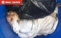 โหดอะไรขนาดนี้ จับน้องหมาใส่ถุงปุ๋ย เชือกมัดรอบตัวโยนทิ้งถังขยะ